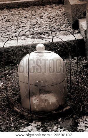 Bell Jar On Grave