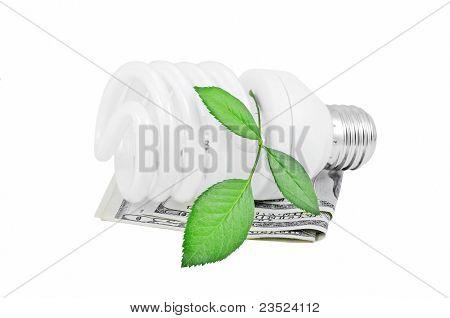 Energy saving light bulb, money and plant