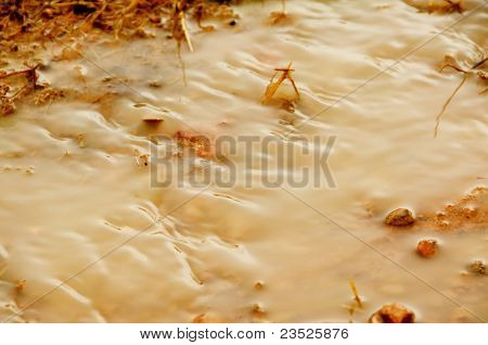 detail of a puddle in a dirt road after the rain