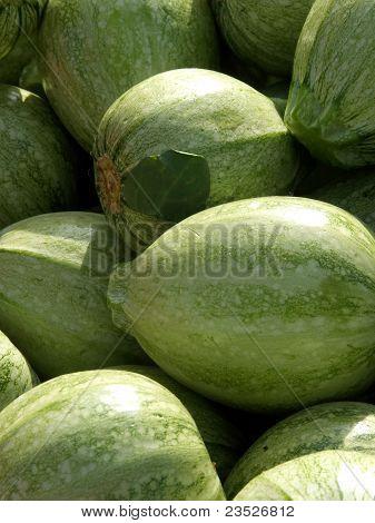 Organic Melons