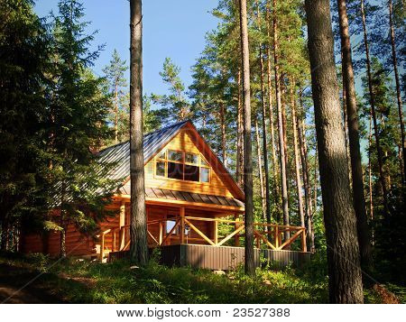 Log House In The Forest