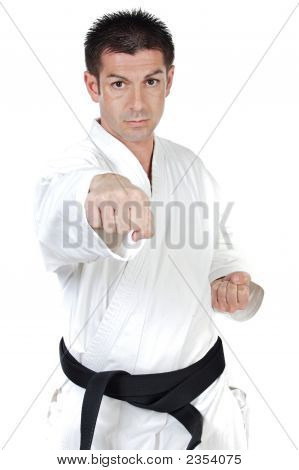 Martial Arts Punch