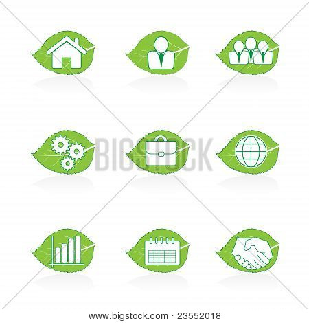 Eco green leaf icon set