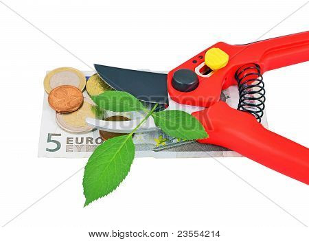 Garden pruner, green leaf and money