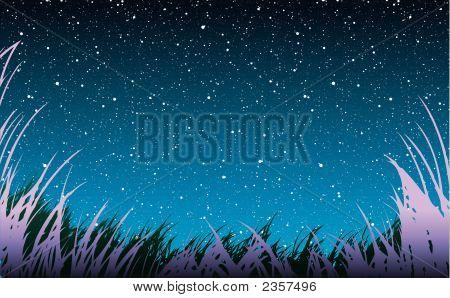 Grass Under Stars