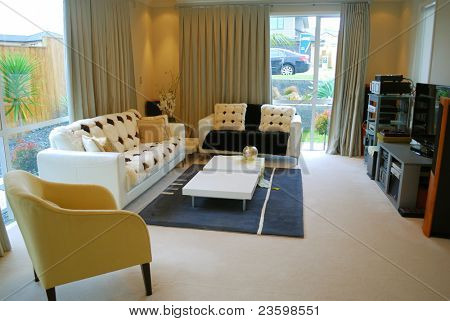 stylish living room design