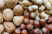 Peanuts, Hazelnuts And Walnuts With Nutshells Mix Background poster