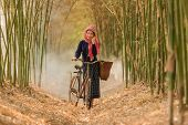 Lifestyle Of Rural Asian Women In The Field Countryside Thailand.daily Life Of Rural Women In Thaila poster