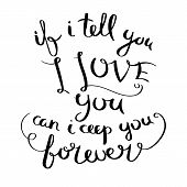 If I Tell You I Love You Can I Ceep You Forever. Inspirational Vector Hand Drawn Quote. Ink Brush Le poster