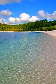 stock photo of mckenzie  - Lake McKenzie is one of the popular freshwater lake at Fraser Island Australia - JPG