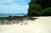 image of olongapo  - A lonely isolated beach in El Nido Palawan Philippines - JPG