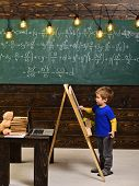 Little Boy Writing On Chalkboard. Side View Kid In Front Of Green Board With Math Equation. Smart Li poster