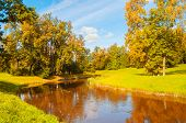 Autumn Landscape In Sunny Day. Golden Autumn Trees At The Bank Of The Autumn River - Colorful Sunny  poster