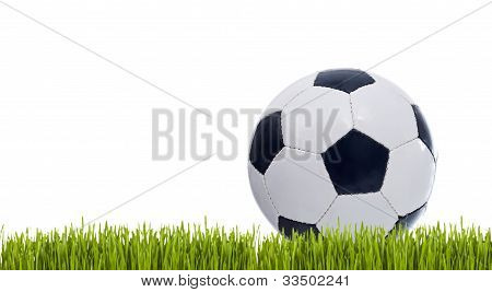 Classic Soccer Ball On Grass