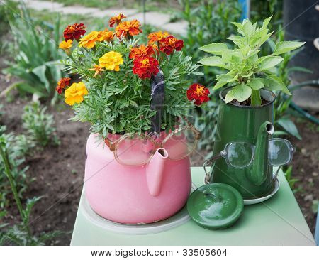 Old Kettles Used In Garden Design