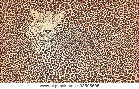 Pattern Background Leopard.epsPattern background leopard