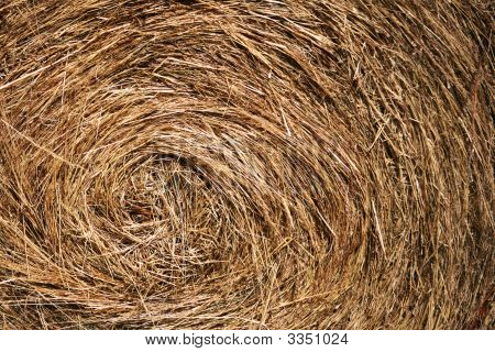 Bale Of Hay - Close Up