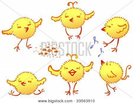 the Funny Chickens