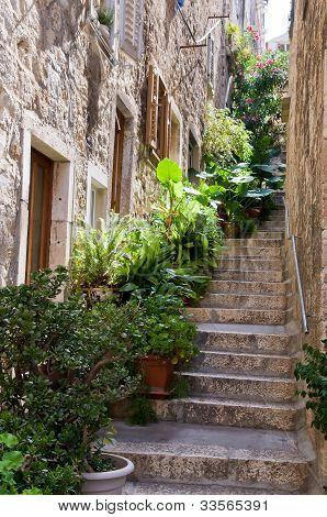 Typical mediterranean street