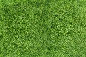 Artificial Green Grass Low Height Close-up. Closeup Of Artificial Grass Made Of Plastic. poster