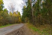Paved Road Stretching Into The Distance. Road In The Autumn Forest.paved Road Stretching Into The Di poster