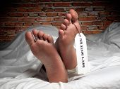 stock photo of autopsy  - Funny image of a man who is resting covered with a sheet like in the morgue - JPG