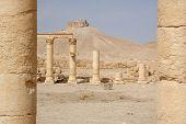 stock photo of euphrat  - Arab Castle On Hill  - JPG
