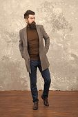 Mature Trendy Man With Beard. Male Fashion Model. Mature Businessman. Casual Style Look. Modern Life poster