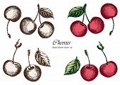 Set Of Sketchy Cherries. Hand Drawn Vector Illustration. Isolated Elements For Design. poster