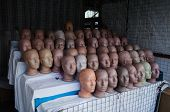 Rows Of Female Head Mannequins On The Street Market Vendor. Plastic Dummy Heads In A Row In The Empt poster