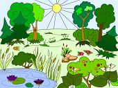 Colorful Drawing Field And Meadow. Lots Of Plants And A Lake. Vector poster