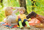 Family Picnic. Mother Pretty Woman And Little Son Relaxing Forest Picnic. Good Day For Spring Picnic poster