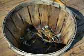 foto of blue crab  - A pair of Blue Crabs await a trip to the steamer - JPG