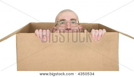 Man In Carton