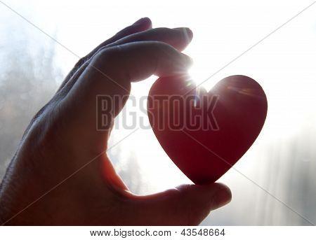 Heart of the Rising Sun