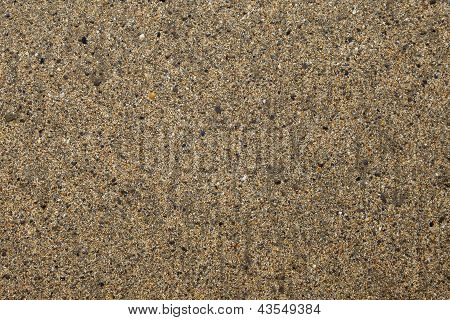 Beach - Intricate Detail - Sand Grains, Stones, Shells, Minute Detail - Background Texture.