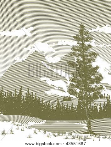 Woodcut Mountain And Lake