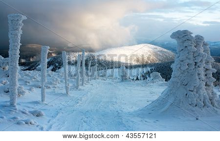 wintry ski trail on Jeseniky mountain - Czech Republic