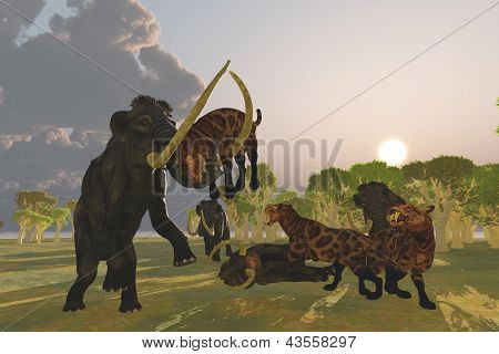 Mammoth And Saber Tooth Cat