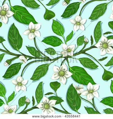 White Flowers on Twig Seamless Pattern
