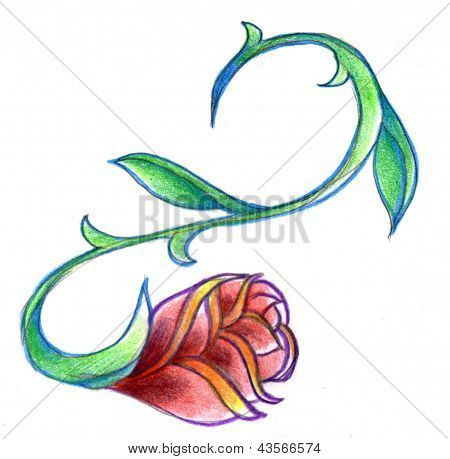 Winding Rose