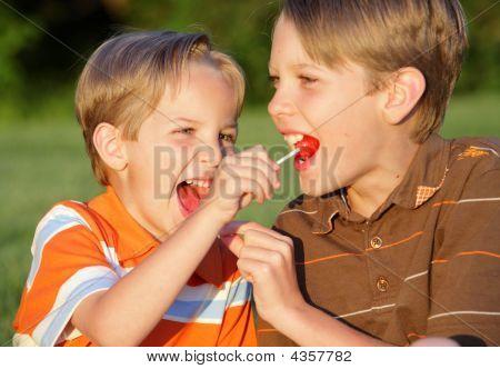 Sucker Sharing