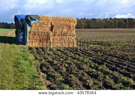 Straw bales under a tarpaulin.