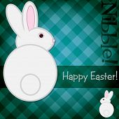 picture of nibbling  - Easter bunny nibble card in vector format - JPG