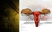 foto of fimbriae  - Digital illustration of  Uterus  in  colour  background - JPG