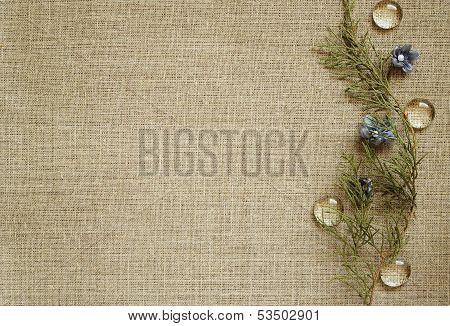 Background With Floral Arrangement