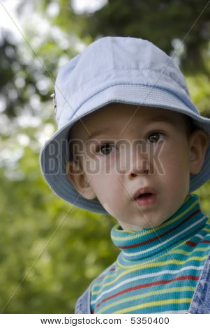 Portrait Of The Little Boy On A Summer Wood Background