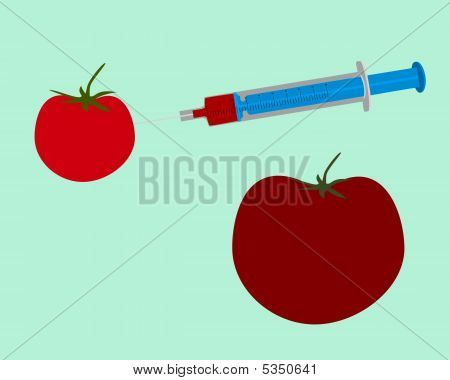 Illustration Of Genetic Engineering Of A Tomato On Green Background