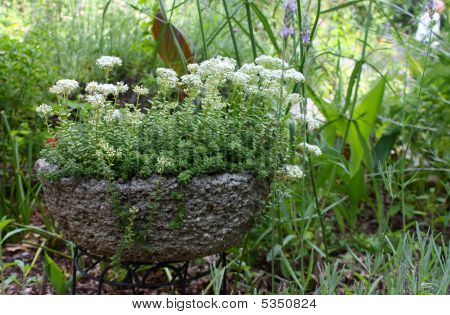 Jardinera de piedra