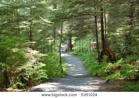 Sitka Path